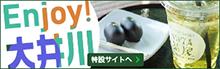 Enjoy!大井川